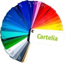 Carta de colores de vinilos autoadhesivos